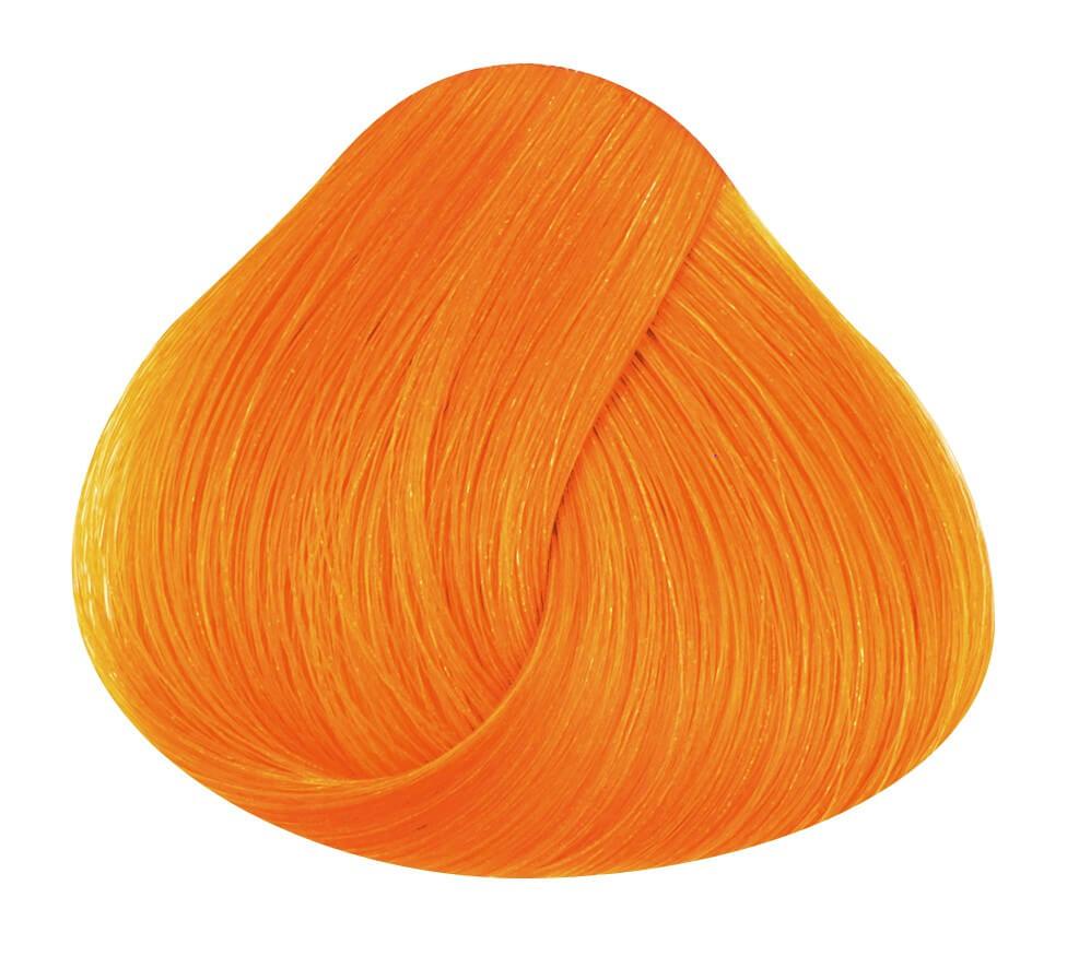 LX1363 apricot